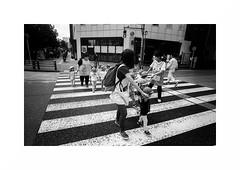 Tokyo - Shinjuku (Punkrocker*) Tags: leica m7 voigtlander ltm colorskopar 21mm 214 film kodak trix 400 nb bnw monochrome bwfp street city people tokyo shinjuku japan japon nihon nippon travel