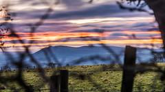 Revisiting the Belfast Hills from Knockagh (Gerry Lynch/林奇格里) Tags: outdoor belfast belfasthills bluehour cavehill clouds cloudy countyantrim hills ireland landscape landscapes northernireland sky sunset twilight ulster winter 云 冬天 北爱尔兰 天 天空 山 日落 暮 暮色 欧洲 爱尔兰 贝尔法斯特