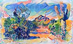 desert paintbox (milomingo) Tags: photoart multicolored desert arizona southwest nature garden outdoor cactus arid texture a~i~a