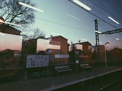 2020-01-11 09.23.01 1 (espinozacdani20) Tags: rosa landscape reflejo tren estation reflex