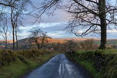 Road to Burrator (pm69photography.uk) Tags: burrator burratorreservoir devon dartmoor dartmoornationalpark southwest sony sonya7r3 sonya7riii sigma45mmcontemporary sigma45mmf28 45mm sigma