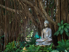Buddha statue (Alejandro Hernández Valbuena) Tags: naturalbackground buddhastatue meditation buddha zen background statue ancient art asian buddhism buddhist calm culture garden green meditating nature oriental peace