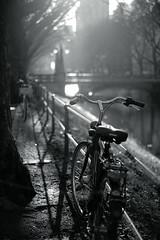 winter light@Kö-Graben, Düsseldorf 22 (Amselchen) Tags: sony zeiss carlzeiss sonnart1855 sonnar5518za sonyilce7rm2 fe55mmf18za mono monochrome lightandshadow light shadow blackandwhite sel55f18z bicycle twop bokeh blur dof depthoffield season winter