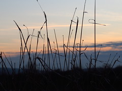 sunsetting (germancute ***) Tags: nature landscape landschaft outdoor thuringia thüringen