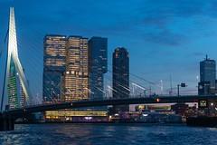 Rotterdam Skyline (leandra.castellino) Tags: rotterdam erasmusbridge netherlands holland