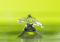 Watersplash (Helena Johansson 71) Tags: water waterdrops watersplash green macro macrophotography nikond7500 d7500