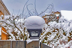 Snow Cap (brianmurphy1950 ....Thanks For Your Visit) Tags: elements penticton bc