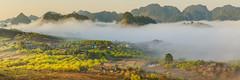 _MG_8302-11.0212.Tân Lập.Mộc Châu.Sơn La (hoanglongphoto) Tags: fog foggy thickgloom misty haze mists mist thickfog hoanglongphoto canoneos5dmarkii mộcchâu sơnla vietnam việtnam northvietnam northernvietnam vietnamlandscape scenery vietnamscenery mocchau landscape morning nature asia asian northwestvietnam naturelandscape mocchaulandscape sky vietnammountainouslandscape forest theforest earlyfrost earlymorningfog fogofmocchau sươngmùmộcchâu tâybắc tânlập sươngmù núi mountain phongcảnhthiênnhiên sươngsớmmộcchâu sunshine sunny morningsunshine buổisáng nắng nắngsớm plumblossom hoamận hoamậnmộcchâu đồihoamận earlysunshine canonef100400mmf4556lisusm flanksmountain sườnnúi mâymộcchâu mâyluồnmộcchâu panorama 1x3