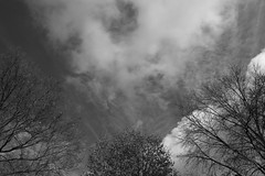Winter Sky Cloudy (Modkuse) Tags: winter wintersky winterbeauty sky art nature clouds skyscape natural artistic cloudy dramaticsky photoart cloudscape fineartphotography artisticphotography natureart cloudyday artphotography blackandwhite bw monochrome fineart wideangle fujifilm fujinon nopostprocessing acros xh1 sooc straightoutofcamera acrossimulation fujinonxf1655mmf28rlmwr fujifilmxh1 xh1acrossimulation