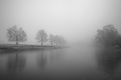 Mist of Eden...2 (vincocamm) Tags: cumbria lazonby rivereden edenvalley trees mist misty fog water waterscape longexposure nikon d7500 december winter frost frosty morning morningmist sultry moody foggy