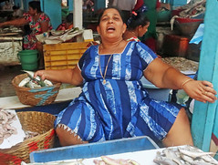 Selling Fish in the Market - Gao, India (TravelsWithDan) Tags: woman fishmonger retail market fish bluedress surprised candid streetphotography city urban canong3x goa india