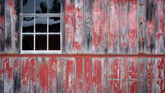 (jtr27) Tags: dscf1829xl3 jtr27 red shed building barn maine peelingpaint window reflection patina vivitar komine 55mm f28 macro manualfocus