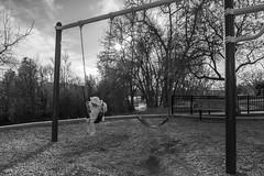 Alone (Ezra Greenlee) Tags: blackandwhite f28 28 wideangle dslr tokina nikon usa lakewood colorado park swing girl todler kid baby