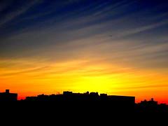 New York Sunset (dimaruss34) Tags: newyork brooklyn dmitriyfomenko image sky skyline clouds sunset jetliner