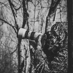 Life is Wild (_Ameskhan_) Tags: photographie photography wildlife animalière camouflage ghillie dordogne observation oiseau sony alpha france aquitaine