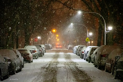 Andersonville (Andy Marfia) Tags: chicago andersonville street snow storm winter d7500 1680mm