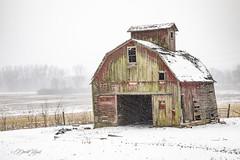 Into the Wind (david.horst.7) Tags: building farm rural barn corncrib crib decay weathered snow landscape farmscape