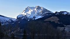 Wägital / Fluebrig (Kanton Schwyz) (Bergwandern Alpen) Tags: wägital kantonschwyz alpen alps berg mountain fluebrig morgendämmerung dawn