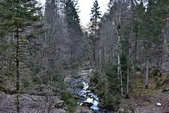 Aberenbach (Kanton Schwyz) (Bergwandern Alpen) Tags: kantonschwyz wägital bergbach bach creek aberenbach wald forest bergwald mountainforest alpen alps