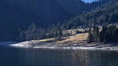 Au (Kanton Schwyz) (Bergwandern Alpen) Tags: wägital wägitalersee kantonschwyz au dorf bergdorf village see lake bergsee alpen alps wald forest bergwald mountainforest tannen fiers