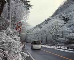 路边 (WangJ designer) Tags: 日本 japan japantravel mamiya mamiyarz67 mamiyarz67proiid 120film 120 film 枥木县日光市 日光 fujifilm provia100f