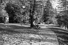 ** (Koprek) Tags: fuji fujigw690ii 6x9 medium format film analog croatia plitvice lakes ilford ilfordfilm delta 400 october 2019 monochrome