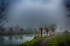 lo-vis (stevefge) Tags: winter mist beuningen gelderland trees houses water netherlands birds reflections landscape bomen nikon path nederland bridges nl ghostly reflectyourworld