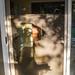 Sliding Glass Door Reflection 08