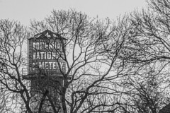 (jfre81) Tags: chicago north mayfair bohemian national cemetery water tower side tree winter bare 312 windy second city urban james fremont photography jfre81 canon rebel xs eos black white blackandwhite bw monochrome