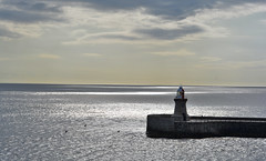watch out Newcastle upon Tyne (matthias416) Tags: england britain greatbritain harbour hafen lighthouse leuchtturm meer sea ocean sky himmel light licht clouds wolken grosbritannien nikon