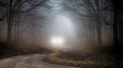 Fari (Va e VIENI) Tags: art ambrosioni zzmanipulation fari nebbia strada natura inverno