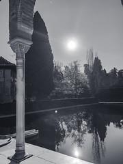 Alhambra (Sara Soler) Tags: alhambra granada spain españa blancoynegro blackwhite