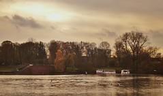 (Farm Speed Racer) Tags: autumn 2017 november river sky boat ship bird scenery