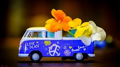 Peace Love - 7986 (✵ΨᗩSᗰIᘉᗴ HᗴᘉS✵90 000 000 THXS) Tags: getnatureinyourhome flower flora miniature home blue sony belgium europa aaa namuroise look photo friends be yasminehens interest eu fr party greatphotographers lanamuroise flickering challenge peace love smileonsaturday smile toy auto automobile pensée color