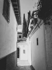 Granada (Sara Soler) Tags: granada streets andalucía spain españa blancoynegro blackwhite