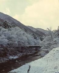 观音泽旁小桥 (WangJ designer) Tags: 日本 japan japantravel mamiya mamiyarz67 mamiyarz67proiid 120film 120 film 枥木县日光市 日光 fujifilm provia100f