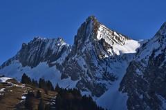 Rossalplispitz / Brunnelistock (Kanton Schwyz/Kanton Glarus) (Bergwandern Alpen) Tags: rossalpspitz brunnelistock alpen alps berge mountains berg mountain blauerhimmel bluesky kantonschwyz kantonglarus