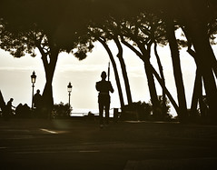 Monaco (CA_Rotwang) Tags: guard soldier monace monte carlo shadow light sun trees bäume schatten