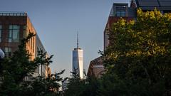 WTC One Washington Square Park (carlosc347) Tags: wtc one washington square park street nyc new york