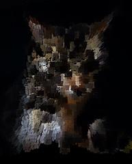 Extruded Tigger (Kanji (inverted height)) (sjrankin) Tags: 18january2020 edited processed 3d extruded test output closeup animal cat tigger yubari hokkaido japan