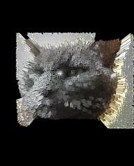 Extruded Bonkers (Hiragana) (sjrankin) Tags: 18january2020 edited processed 3d extruded test output closeup animal cat bonkers kitahiroshima hokkaido japan