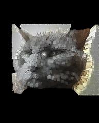 Extruded Bonkers (Grade School Kanji) (sjrankin) Tags: 18january2020 edited processed 3d extruded test output closeup animal cat bonkers kitahiroshima hokkaido japan