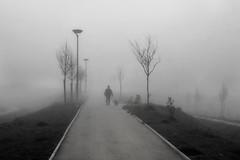 Nella nebbia (MaOrI1563) Tags: fog nebbia mystic vingone scandicci coop firenze florence tuscany toscana italy italia cane uomo