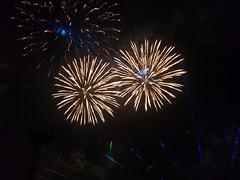 Fireworks_EPCOTForever (136) (*Ice Princess*) Tags: disneyworld waltdisneyworld epcot fireworks epcotforever