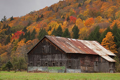 An old wooden house with multi-colored fall foliage forest in background. (Vermont Autumn Scene) (baddoguy) Tags: autumn leaf color awe beauty in nature building exterior built structure cloud sky cold temperature image colored background copy space focus on foreground forest grass family green hill horizontal house landscape scenery lush foliage majestic mountain multi multicolored nonurban scene oldfashioned orange outdoors photography red retro style road trip roadside rural tranquil travel destinations tree canopy usa vermont vibrant wood material yellow