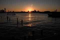 Hudson River (carlosc347) Tags: nyc landscape new york water sunlight sunset hudson river