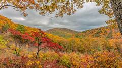 Parkway Overlooks 10/29/2019 07 Panorama (Jim Dollar) Tags: jimdollar parkwayoverlooks blueridgeparkway virginia fall panorama canon5div
