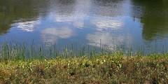 central park (maximorgana) Tags: centralpark newyork nyc ny green lawn grass fisherman