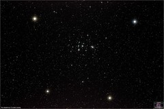 The Beehive Cluster (M44) in Cancer (The Dark Side Observatory) Tags: tomwildoner night deepsky space williamsoptics telescope apo asi071mcpro zwo astronomy astrophotography science pennsylvania observatory earthskyscience redcat m44 beehivecluster opencluster cancer praesepe