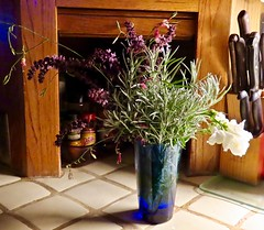 In A Cobalt Blue Vase <> I've Got The Blues (Chic Bee) Tags: smileonsaturday getnatureinyourhome inavase lightandshadows mrsdashsaltfreespices kitchencounter cutflowersandherbs currycuttings cuttings rosemary snapdragons bouquet curryleaves frommywintergarden tucson arizona southwesternusa sonorandesert americansouthwest